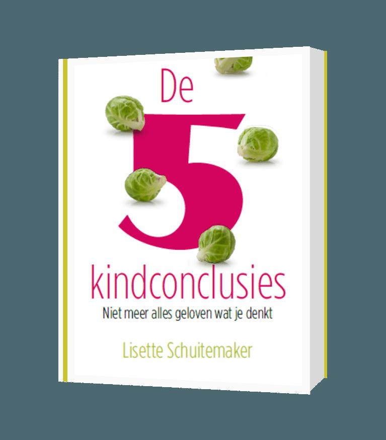 De 5 kindconclusies, boek